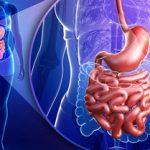 آیا بواسیر یا هموروئید عامل سرطان است؟